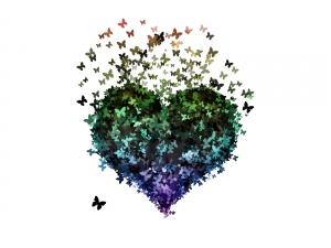 butterflies_in_heart