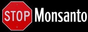 STOP+Monsanto-300x112