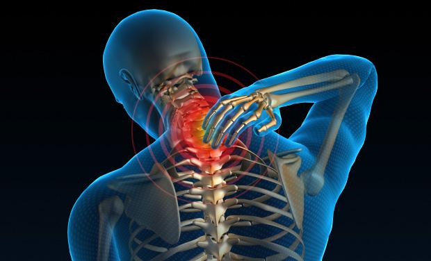 neck II